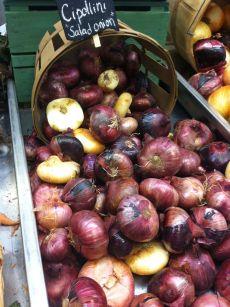 Cippolini Onions