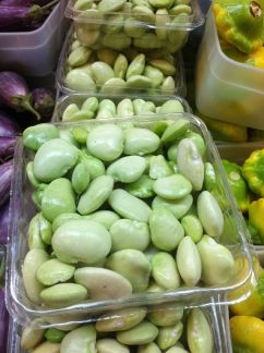 Even Lima Beans are looking good.